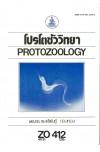 ZO412 (ZOO4405) 41131 โปรโตซัววิทยา